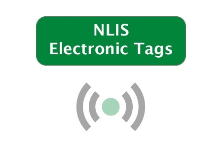 Picture for category NLIS EID Tags